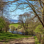 A Country Pathway In Northern England Poster