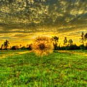 A Dandy Sunset Poster