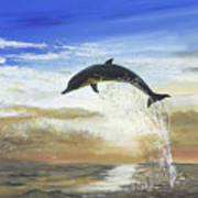 A Dolphin's Life Poster