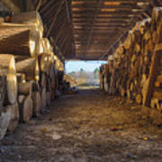 Woodpile At Lusscroft Farm In Color Poster