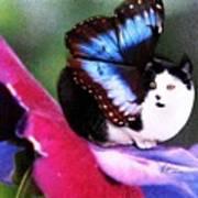 A Feline Fairy In My Garden Poster