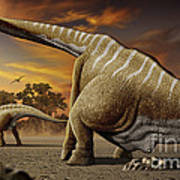 A Female Apatosaurus Laying Her Eggs Poster