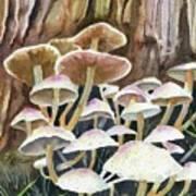 A Fungus Amongus Poster