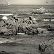 A Good Day Fishing On Monterey Bay In Black And White Poster