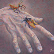 A Hand of Bugs Poster