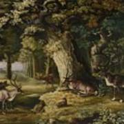 A Herd Of Stag And A Fawn In A Woodland Landscape Poster