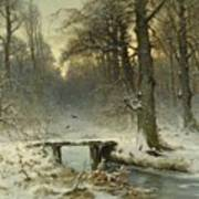 A January Evening In The Woods Poster