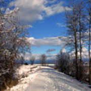 A Kootenai Wildlife Refuge Winter Poster