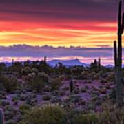 A Magical Desert Morning  Poster