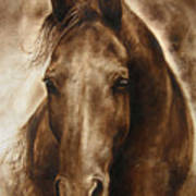 A Misty Touch Of A Horse So Gentle Poster