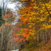A Newport Autumn Poster