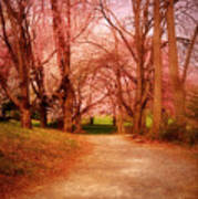 A Path To Fantasy - Holmdel Park Poster