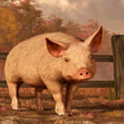 A Pig In Autumn Poster