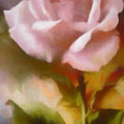 A Pink Rose For Amelia Poster