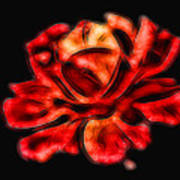 A Red Rose For You 2 Poster by Mariola Bitner