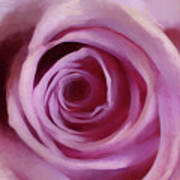 A Rose Abstract Poster