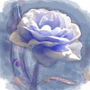 A Rose In Pastel Blue Poster