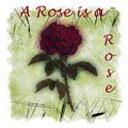 A Rose Poster