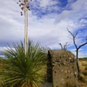 A Shrine In The Desert Poster