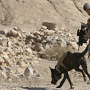 A Soldier And His Dog Search An Area Poster