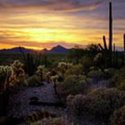A Southern Arizona Sunset  Poster