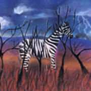 A Stormy Night For A Zebra  Poster