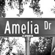 Am - A Street Sign Named Amelia Poster