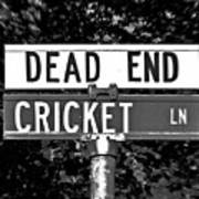 Cr - A Street Sign Named Cricket Poster