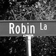 Ro - A Street Sign Named Robin Poster