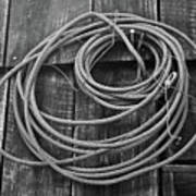 A Study Of Wire In Gray Poster