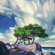 A Tree On The Seashore Reef Poster