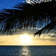 A Tropical Sensation Poster