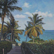 A View In The Virgin Islands Poster