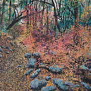 A Walk In The Woods Poster by Lucinda  Hansen