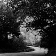 A Winding Road Bw Poster