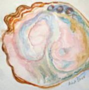 Abalone Shell Study #1 Poster