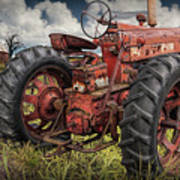 Abandoned Old Farmall Tractor In A Grassy Field Poster
