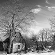 Abandoned Wooden Shack In Winter Poster