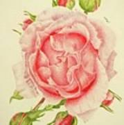 Abbi Rose Poster