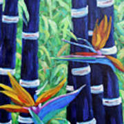 Abstract Bamboo And Birds Of Paradise 04 Poster