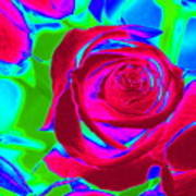 Burgundy Rose Abstract Poster