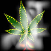 Abstract Cannabis Background Poster