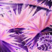 Abstract Purple Flowers Poster