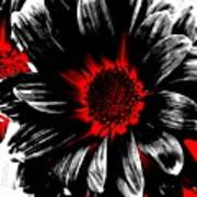 Abstract Red White And Black Daisy Poster