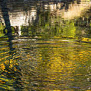 Abstract River Reflection Poster