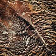 Abstract Surface Bumpy Stone Poster