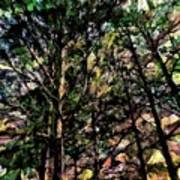 Abstract Trees 691 Poster