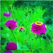 Abstract Zinnias In Green And Pink Poster