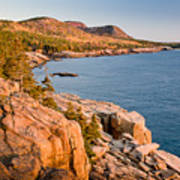 Acadian Cliffs In Autumn 1 Poster by Susan Cole Kelly