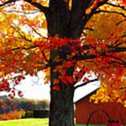 Adirondack Color Show Poster